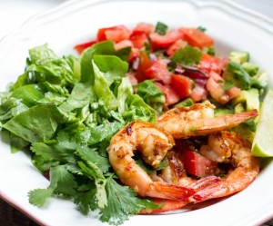 mexican_prawn_salad_plate_wl (2)